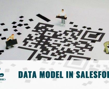 Data Model in Salesforce